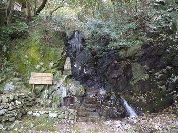 P1290166鳴滝.JPG