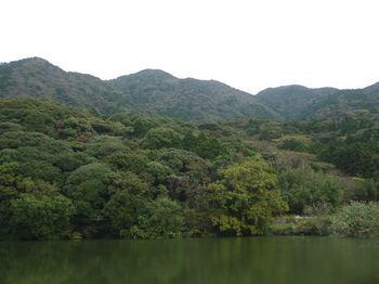 P1290175溜池から狩音山.JPG