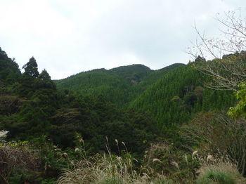 P1290202林道終点付近から狩音山方向.JPG