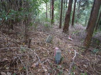 P1290291植林出合い(左方向).JPG