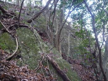 P1290381大岩①.JPG