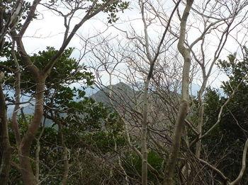 P1290394岩上から狩音山.JPG