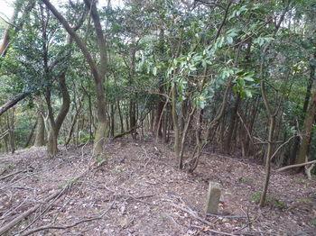 P1290447コン杭「公山」・雑木尾根.JPG
