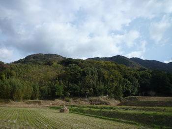 P1290472狩音山・北西尾根.JPG