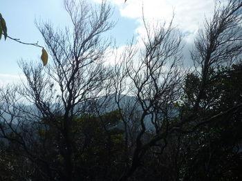 P1290552水場付近から竜王山.JPG