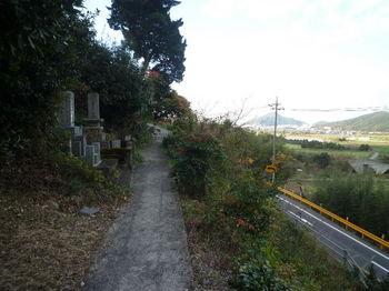 P1290632墓地の小コン道.JPG