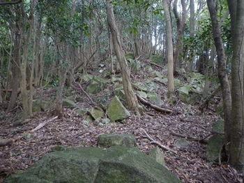 P1290652小岩が重なる.JPG