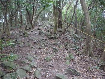 P1290676登山道.JPG