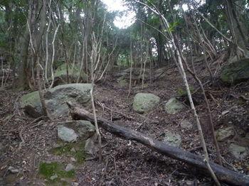 P1290804小岩が並ぶ溝道.JPG