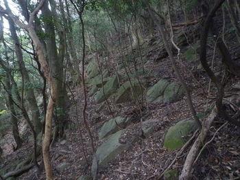 P1290805石垣風の小岩(下段).JPG