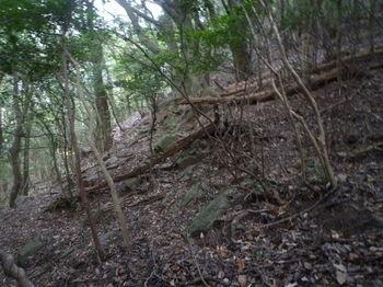 P1290806石垣風の小岩(上段).JPG