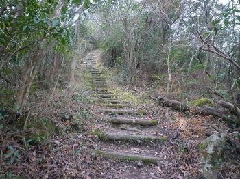 P1290851擬木階段.JPG