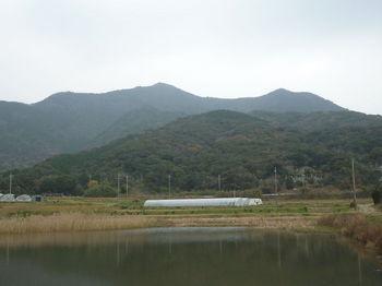 P1290922さるだ堤から牡・牝鋤先山.JPG