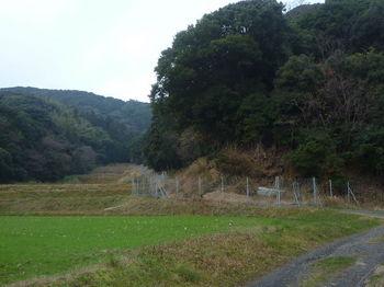 P1290934林道・フェンス.JPG