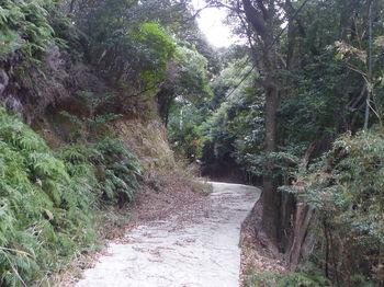 P1290948コン舗装林道.JPG