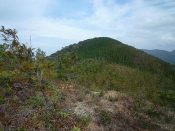 P1300073 180m尾根から宝蔵山.JPG