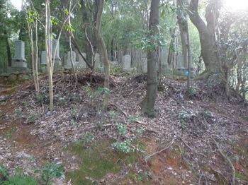 P1300121墓地(逆方向).JPG