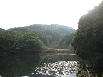 P1300129溜池から宝蔵山.JPG