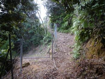 P1300164分岐・ゲートを抜ける.JPG
