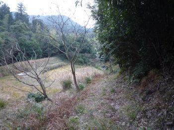 P1300165山道.JPG