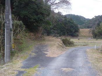 P1300170分岐・左の林道へ.JPG
