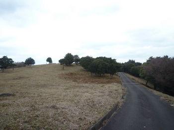 P1300289眺望の丘.JPG