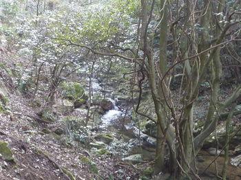 P1300412小河内峡.JPG