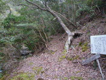 P1300422山道.JPG
