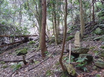 P1300430古墓?.JPG