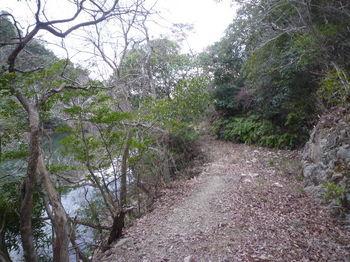 P1300551溜池沿いの林道.JPG