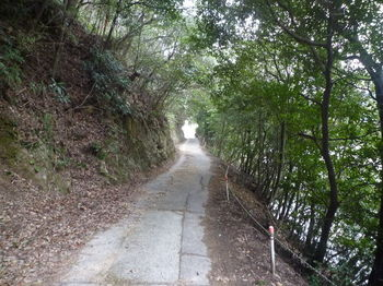P1300561粟野川沿いの市道.JPG