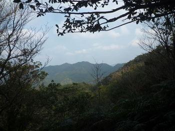 P1300631ザレ山.JPG