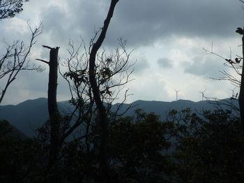 P1300643尾根上から白滝山・風車.JPG