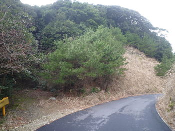 P1300678舗装林道への下降地点(逆方向).JPG