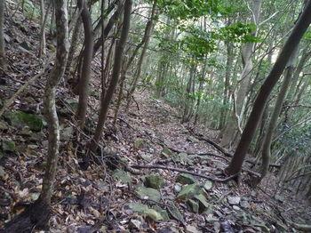 P1300858山道.JPG