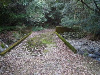P1300883コン橋.JPG