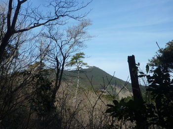 P1300987江嶺山.JPG