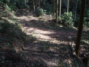 P1310042林道出合い(カーブ地点).JPG