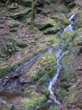 P1310065観音の滝.JPG