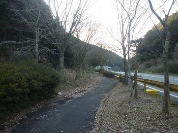 P1310069自転車道.JPG