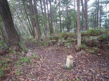 P1310353尾根上の石杭「毛利家、一九九」・植林境.JPG