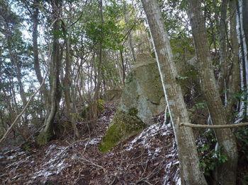 P1310421小岩.JPG