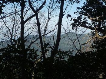 P1310922山頂近くからの樹間展望(地吉山).JPG