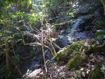 P1310965ミニ滝.JPG