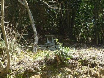 P1320126崖(道路法面)上の石祠.JPG