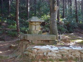 P1320136奥の石祠.JPG