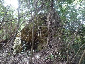 P1320434小岩.JPG