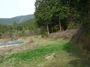 P1320757耕作地沿い.JPG