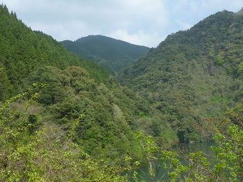 P1320800林道から狼山.JPG