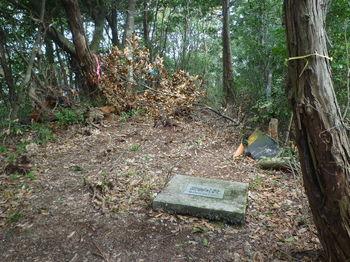 P1320864殉職の碑.JPG